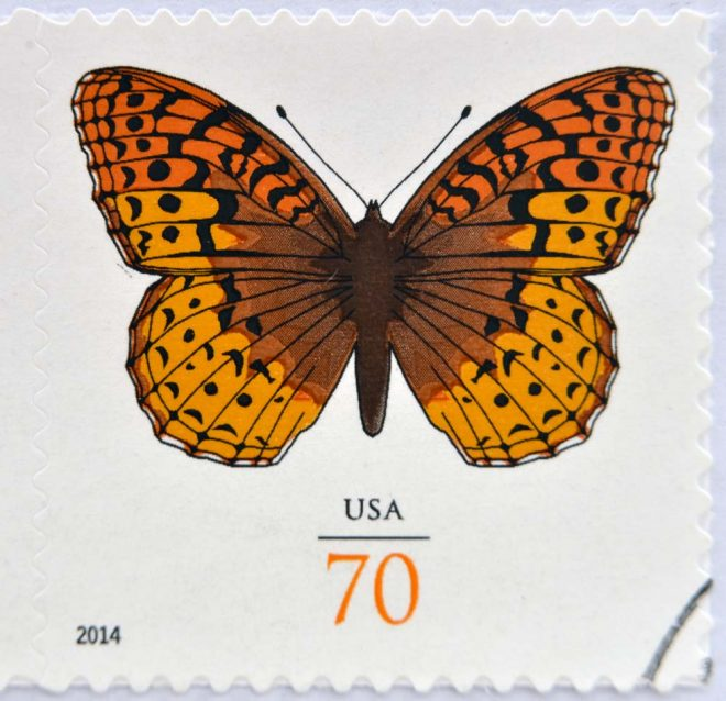 USPS Butterfly Stamp